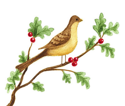 Pretty_bird