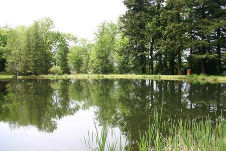 Lake_reflections