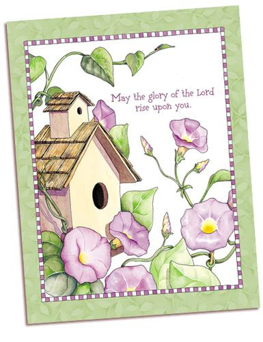 Morning Glory Card