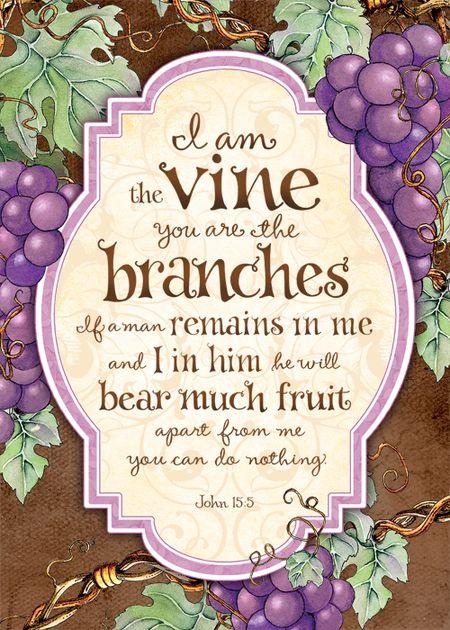 I am the Vine 100