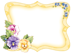 Pansy Frame 01